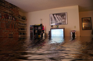 Important Water Damage Care Tips