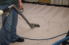 What to Expect from a Good Carpet Cleaning