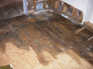 Water Damage Care Tips