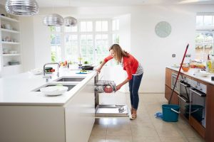 mold in kitchen appliances