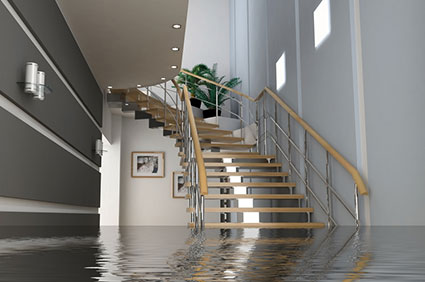 water damage removal company